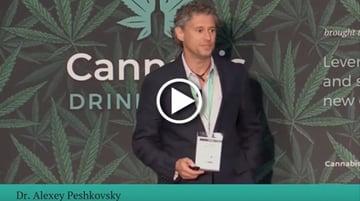 Dr. Alexey Peshkovsky's presentation