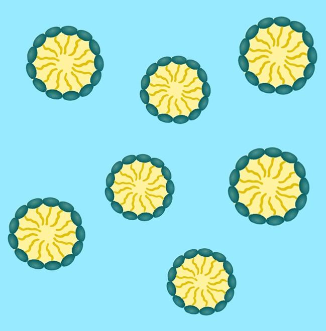 nanoemulsion-4.jpg